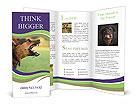 0000025923 Brochure Templates