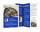0000025974 Brochure Templates