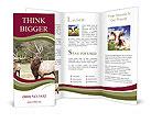 0000026060 Brochure Templates