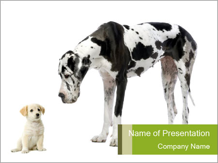 Small And Huge Dogs Powerpoint Template Backgrounds Google Slides