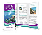 0000026816 Brochure Templates