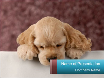 Lonely Puppy PowerPoint Template