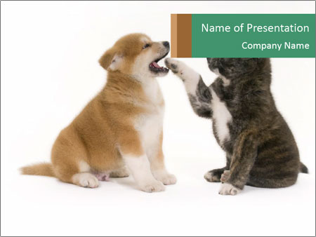 Akita Inu Puppies Playing Together Powerpoint Template Backgrounds