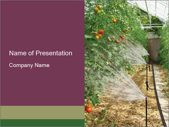 Organic Private Farm PowerPoint Template