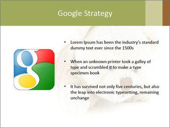 Beige Teddy Bear Modèles des présentations  PowerPoint - Diapositives 10