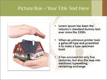 Beige Teddy Bear Modèles des présentations  PowerPoint - Diapositives 13