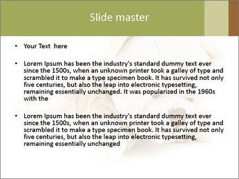 Beige Teddy Bear Modèles des présentations  PowerPoint - Diapositives 2