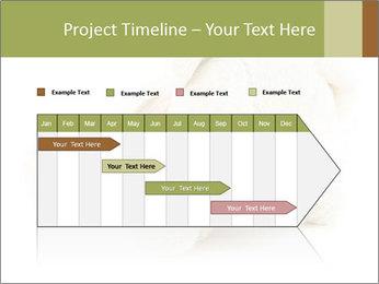 Beige Teddy Bear Modèles des présentations  PowerPoint - Diapositives 25