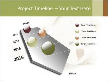 Beige Teddy Bear Modèles des présentations  PowerPoint - Diapositives 26