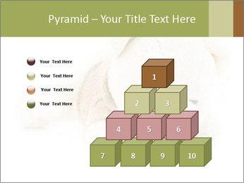Beige Teddy Bear Modèles des présentations  PowerPoint - Diapositives 31