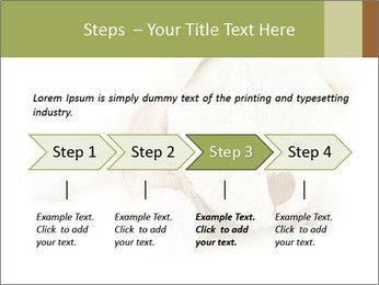 Beige Teddy Bear Modèles des présentations  PowerPoint - Diapositives 4