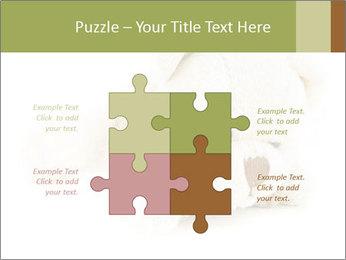 Beige Teddy Bear Modèles des présentations  PowerPoint - Diapositives 43
