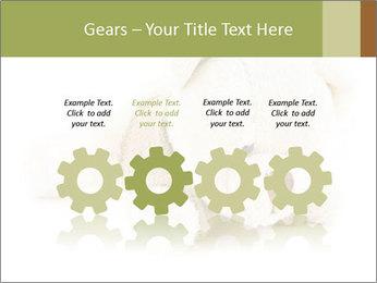 Beige Teddy Bear Modèles des présentations  PowerPoint - Diapositives 48