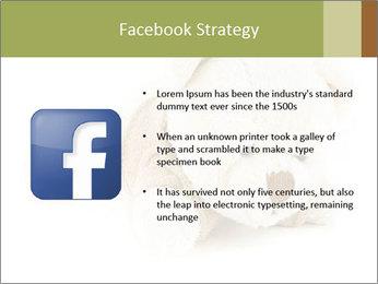 Beige Teddy Bear Modèles des présentations  PowerPoint - Diapositives 6