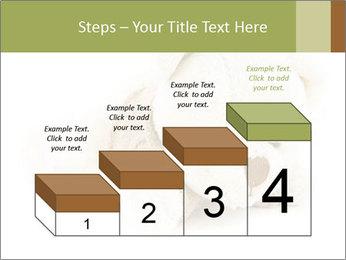 Beige Teddy Bear Modèles des présentations  PowerPoint - Diapositives 64