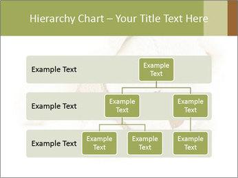 Beige Teddy Bear Modèles des présentations  PowerPoint - Diapositives 67