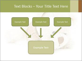 Beige Teddy Bear Modèles des présentations  PowerPoint - Diapositives 70