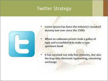 Beige Teddy Bear Modèles des présentations  PowerPoint - Diapositives 9