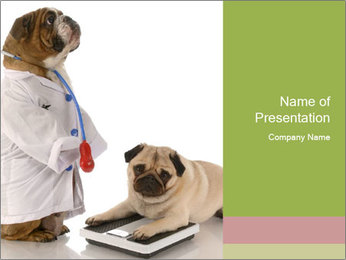 Overweight Dogs PowerPoint Template