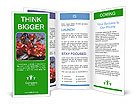 0000027382 Brochure Templates