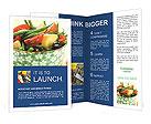 0000027448 Brochure Templates