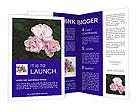 0000027674 Brochure Templates