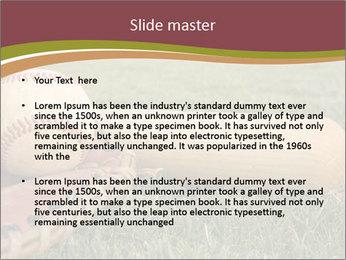 Popular Baseball Game PowerPoint Template - Slide 2