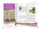 0000027811 Brochure Templates
