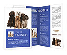 0000027867 Brochure Templates