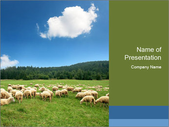 Sheep Eating Grass in Meadow PowerPoint Template