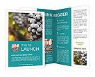 0000028139 Brochure Templates