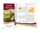 0000028660 Brochure Templates