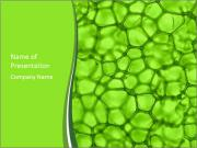 Green Bubbles PowerPoint Templates
