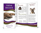 0000029151 Brochure Templates
