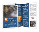 0000029216 Brochure Templates