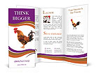 0000029361 Brochure Templates