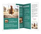 0000029793 Brochure Templates