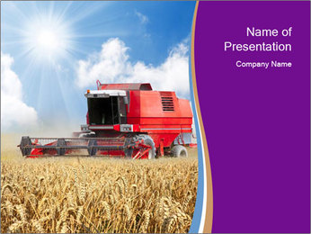 Farmland During Harvesting Season PowerPoint Template