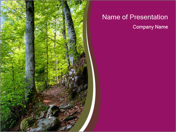 Hiking in the Forest PowerPoint Template