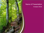Hiking in the Forest PowerPoint Templates