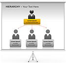Hierarchy PPT Diagrams & Chart