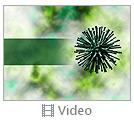 Micro Organism Video