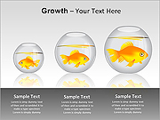 Growth PPT Diagrams & Charts