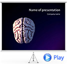 3D Human Brain Picture Animated PowerPoint Template