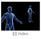 Blue Colored Body Anatomy Video