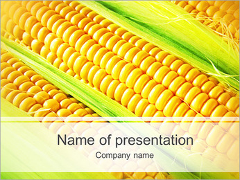 Corn Harvest PowerPoint Template