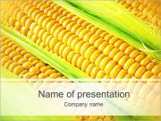 Corn Harvest PowerPoint Templates