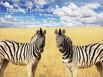 Zebras PowerPoint Template