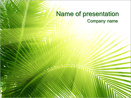 Coconut Tree Powerpoint Template Backgrounds Google Slides Id