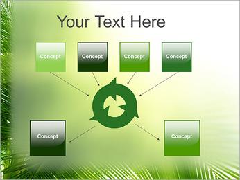 Coconut Tree Modèles des présentations  PowerPoint - Diapositives 10